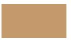 SAA Consult Ltd